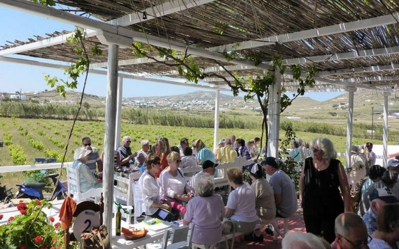 Private cultural and winery tour