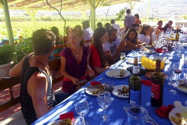 Mykonos Wine Tour