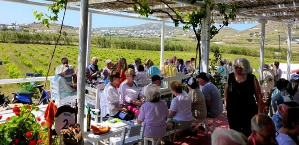 Mykonos Wine Tour And Panorama 4 Hours